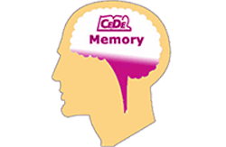 cedememory